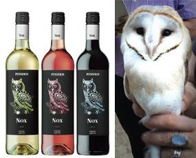 Nox vino pinord conservacion buhos lechuza